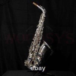 Borgani Pearl Silver Professional Alto Saxophone