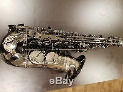 Cannonball Big Bell Stone Series Alto Saxophone Black Nickle