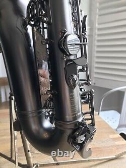 Cannonball Raven Alto Saxophone Big Bell Stone Series 2 Necks & AL3 SUPER CLEAN