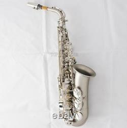 Pro Matte Nickel Alto Saxophone Sax High Pitch D, #D Height adjustable of F key