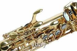 Professional ALTO SAXOPHONE Eb Sax 875 Model Gold Lacquer Real Black Pearl Inlay