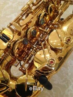 Professional Alto Saxophone New Teacher Recommended