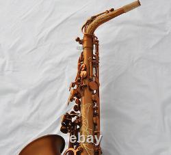 Professional Coffee color Alto Saxophone Saxofon Abalone Shell Key Luxury Case