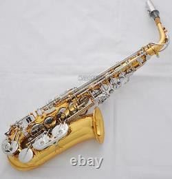 Professional Gold Silver Rolled Note Hole Alto Saxophone Sax Double Rails Keys