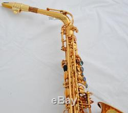 Professional New Gold 54 Reference Eb Alto Saxophone Sax +Pro Metal Mouthpiece