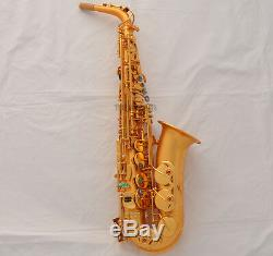 Professional Satin Gold Plated E-Flat Alto Saxophone sax High F# Italian pad New