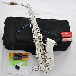 Professional Silver Plating Alto Saxophone New TaiShan E-Flat sax With Case