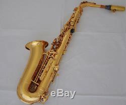 Professional TaiShan Gold Alto Saxophone sax High F Eb New Saxofon With Case