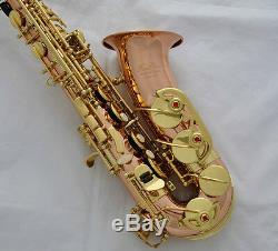 Professional TaiShan Rose Brass Alto Sax Eb Saxophone High F# Saxofon With case