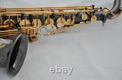 Professional Taishan Eb BLACK alto saxophone high F# sax with case