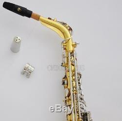 Professional Taishan Gold Silver 5000 Alto saxophone E-Flat Sax Germay Mouth New