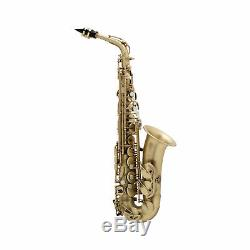 Selmer Paris Reference 54 Professional Alto Saxophone Vintage Matte