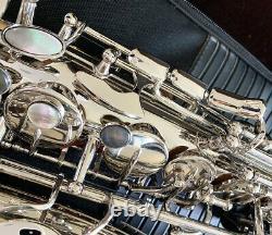 Silver nickel Eb Key Alto saxophone professional 991 Model Saxofon With Case