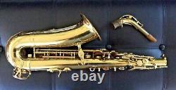 YANAGISAWA A-4 Alto Saxophone Stencil Severin