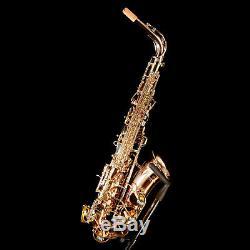 Yanagisawa AW02 Professional Eb Alto Saxophone, All Bronze