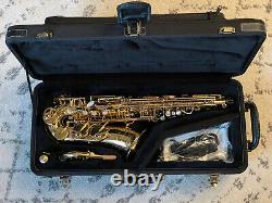 Yanagisawa AWO10 Elite Professional Alto Saxophone, MINT