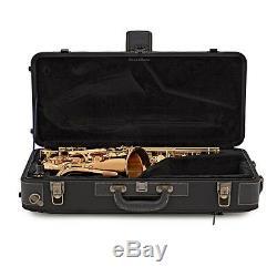 Yanagisawa A-WO2 Alto Saxophone (A-WO1 with bronze body)